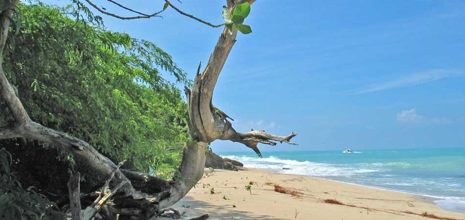 Starfish Jolly Beach Resort & Spa, Antigua