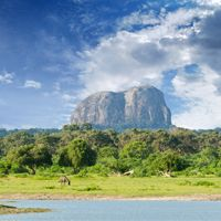 Sri Lanka 14 nights only £1049pp