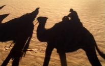 Activities in Oman