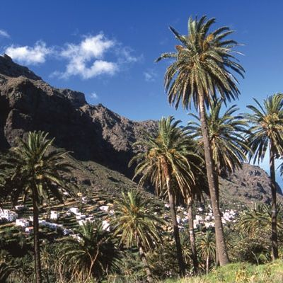Valle Gran Rey-La Gomera
