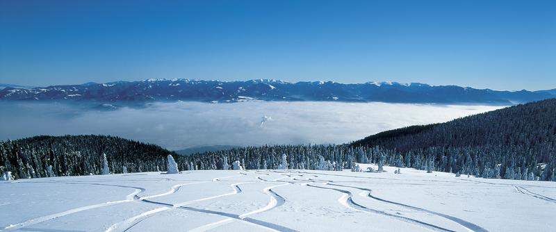 Worldwide Skiing