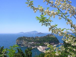 Spa Travel Naples