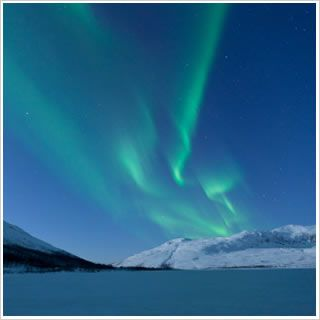 Fjords and Northern Lights Cruises
