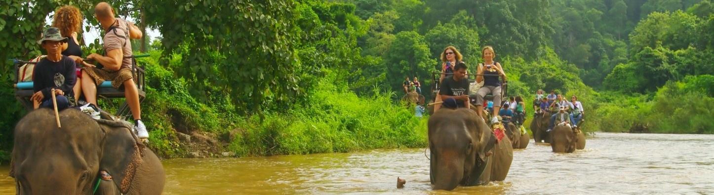 222_05102015_153718_Elephant_Trekking.jpg